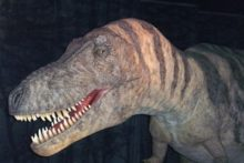 Children and adults are invited to walk with life-size dinosaurs at the city's World Museum.