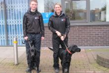 Sniffer dogs have helped to uncover more than £4,000 worth of contraband cigarettes.