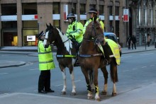Merseyside Police chiefs are considering asking businesses for sponsors to keep their mounted force running.
