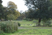 A controversial list of sites which may be earmarked for development has been drawn up by the council, including 30 parks.