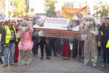 Liverpool played host to a global march raising awareness about the killing of elephants and rhinos.