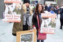 Demonstrators gathered in the  city centre to protest against stores they accuse of selling real fur.