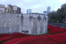 A sea of red poppies that captured the public's imagination in London last autumn will be displayed in Liverpool.