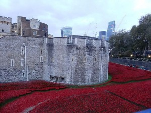 Tower of London poppies. Pic © Jonathan Cardy / Wikimedia Creative Commons