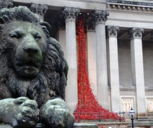 'Weeping Window' poppies display in Liverpool. Pic by Ryan Jones © JMU Journalism