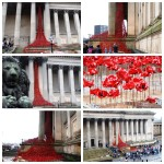 'Weeping Window' poppies display. Pics by Ryan Jones © JMU Journalism