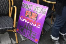 Protesters gathered outside Flannels in Liverpool One to demonstrate against the sale of real fur products.