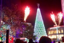 Christmas has come early after the giant tree lit up in Liverpool One on Paradise Street.