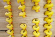 Ormskirk residents came out in force to support a rubber duck race.