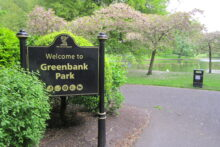 Plans to extend the Watering Can Café in Greenbank Park have been withdrawn.